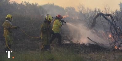 Así trabajaban los bomberos el sábado pasado para sofocar el incendio en Villa Gesell (Fotos Ricardo Stinco).