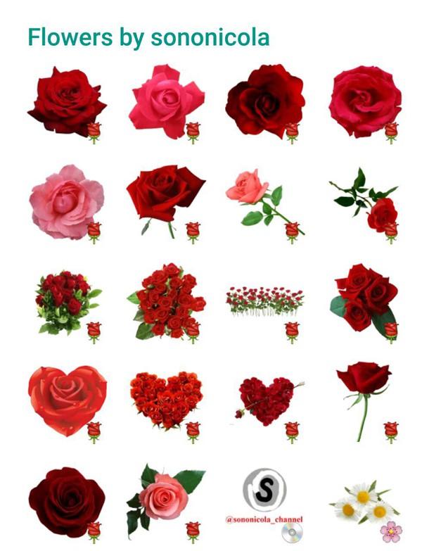 flowers-sticker-pack