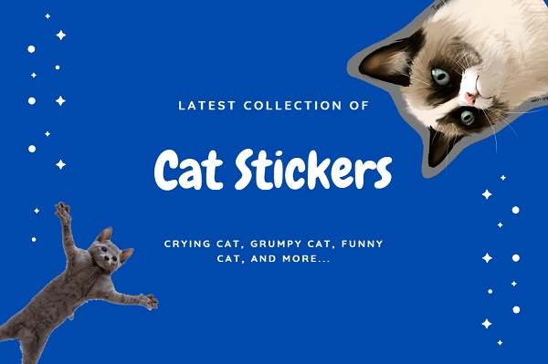 15+ Best Cat Telegram Stickers (Cute, Meme, Grumpy, Bongo, etc.)
