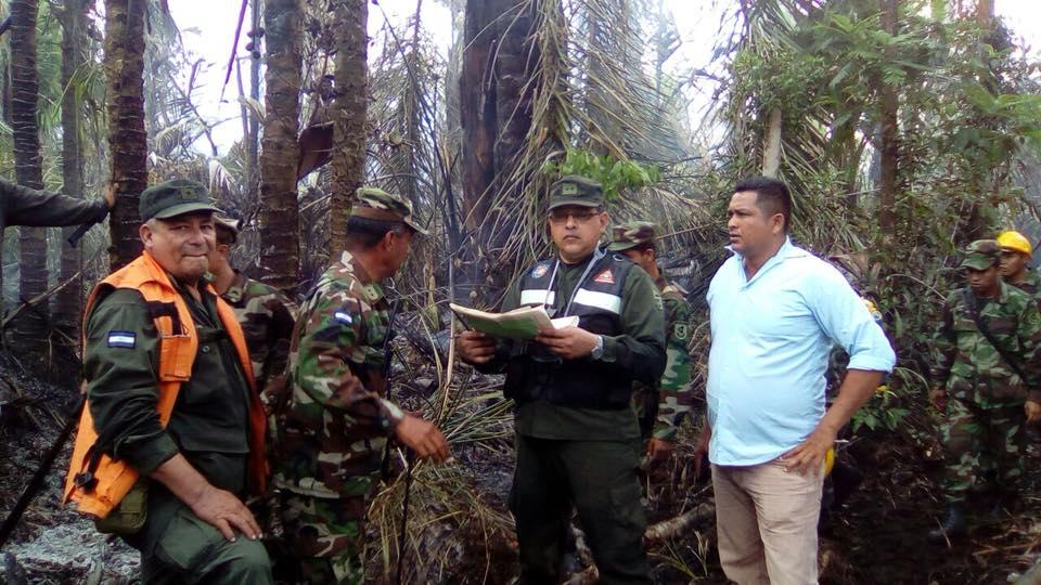 Ejército de  Nicaragua controla el avance de incendio en reserva Indio Maíz.