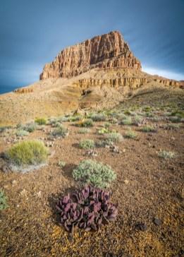 Sumner Butte - Grand Canyon , Arizona