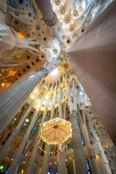 Basilica of the Sagrada Familia Ceiling