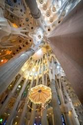 Basilica of the Sagrada Familia Ceiling