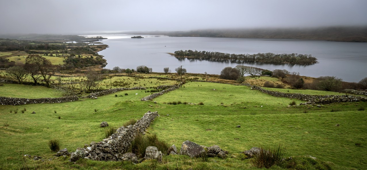 Lough Corrib farmland