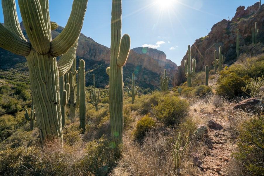La Barge Canyon Trail
