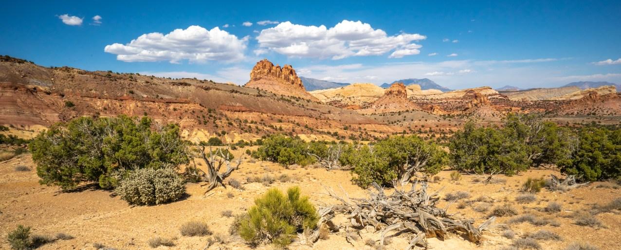 Capitol Reef - Desert Panoramic 2