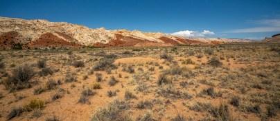Capitol Reef - Desert