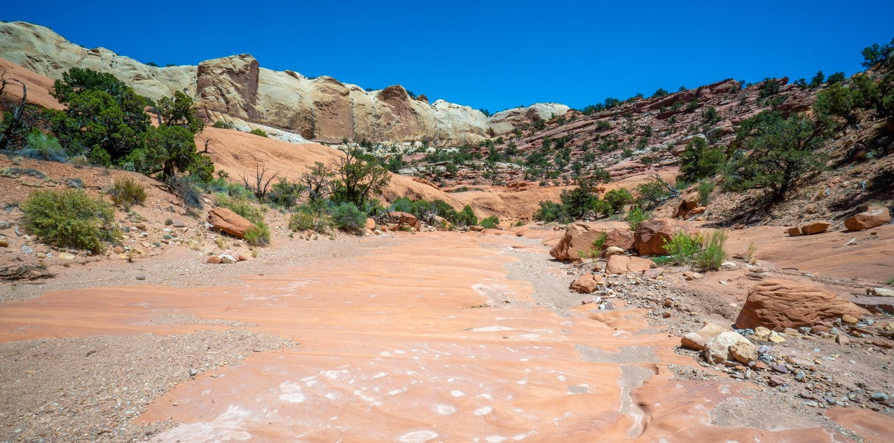 Capitol Reef - Muley Canyon
