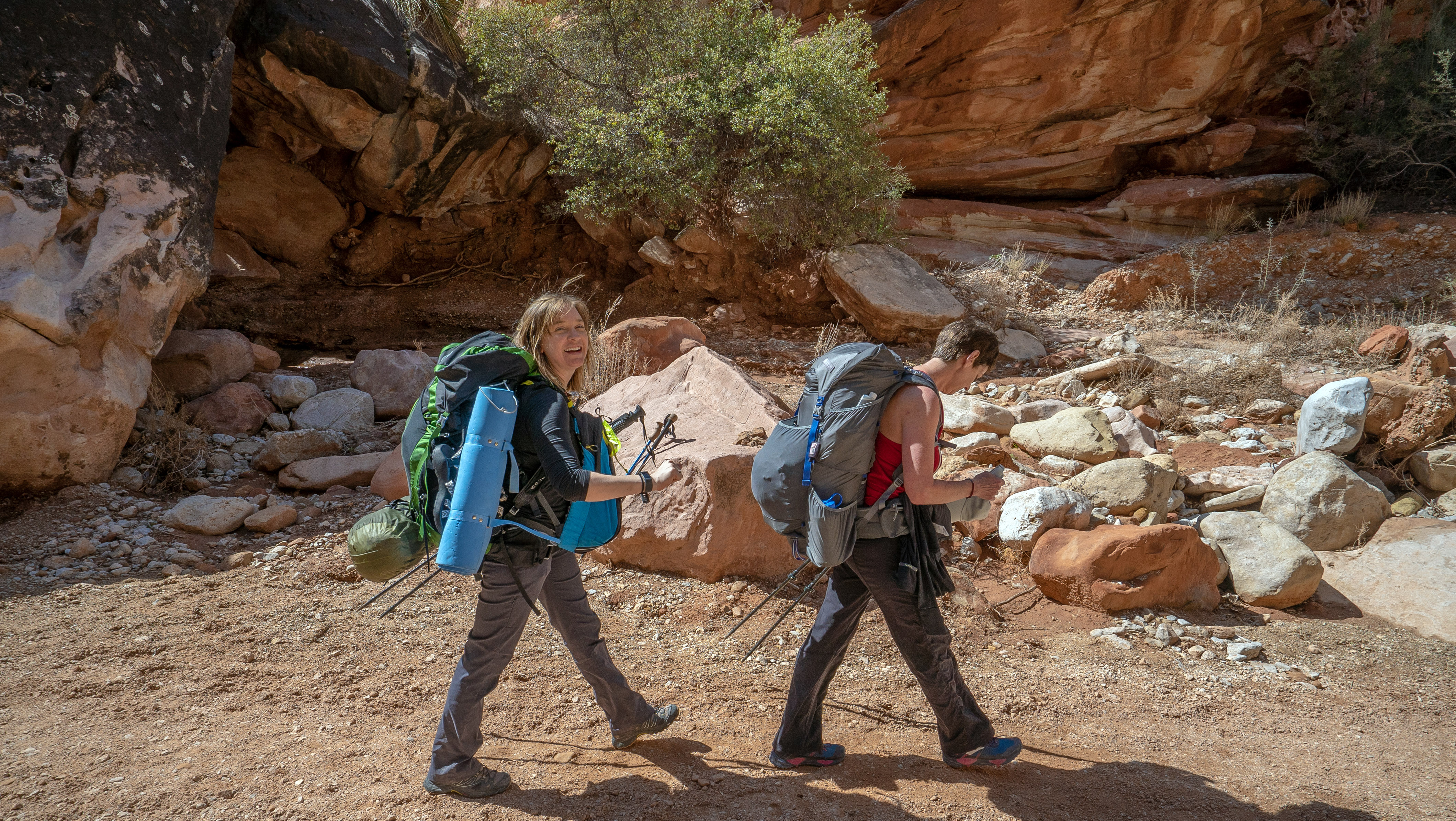 Walking down the Canyon 2
