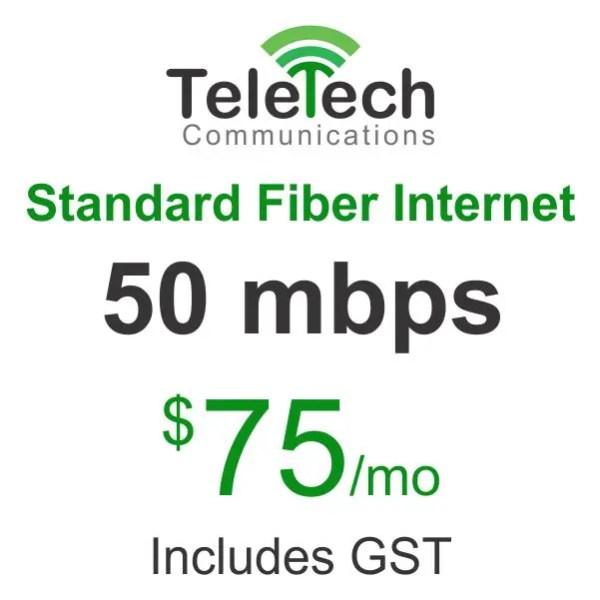 Teletech-Communications-Standard-Fiber-Internet.jpg