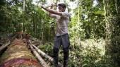 DugOut, An Amazon Adventure