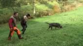 Comment utiliser un chien de pied