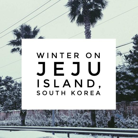 Jeju Island winter, South Korea