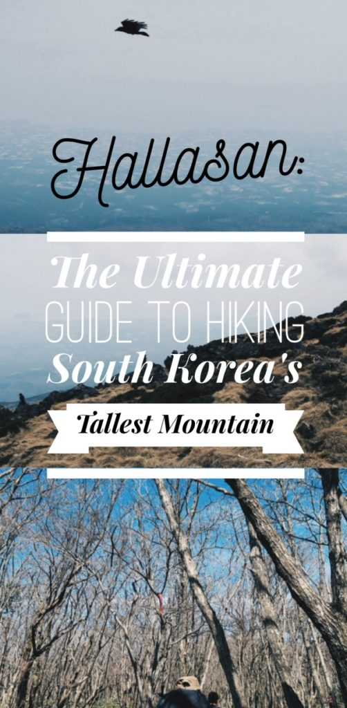 Hallasan: The Ultimate Guide to Hiking South Korea's Tallest Mountain