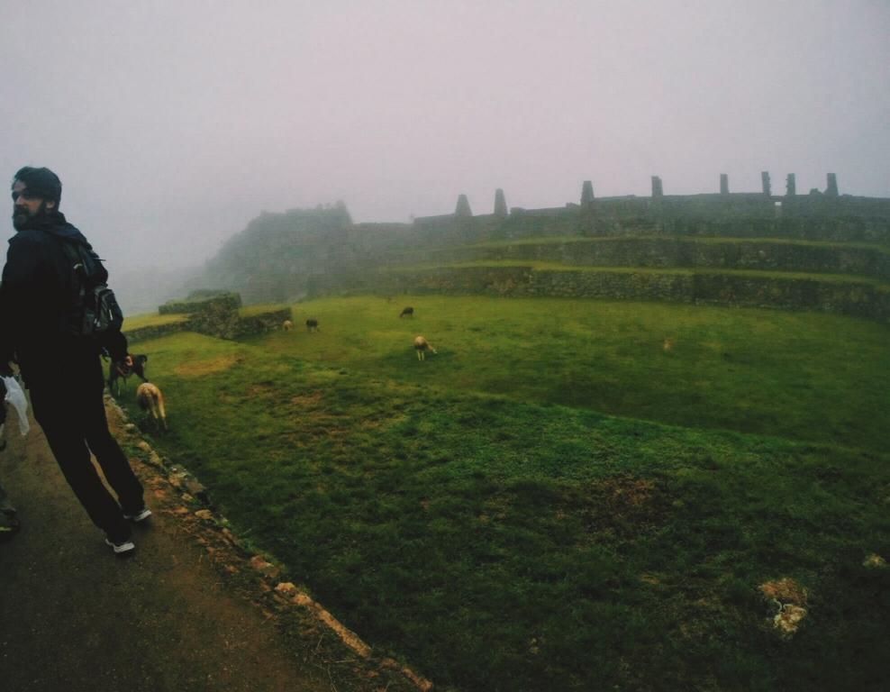 Foggy morning, rushing to climb Huayna Picchu