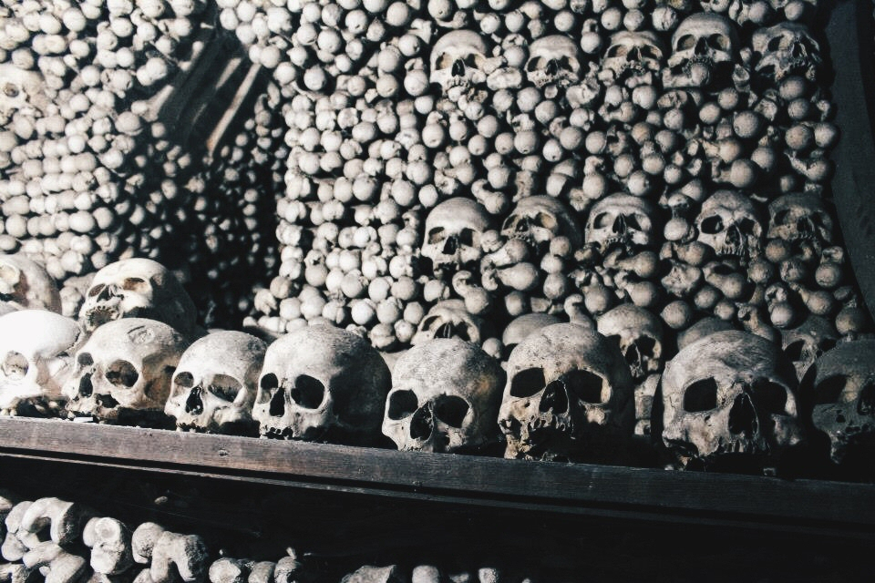 Skeletons at the Bone Church: perfect for Halloween!
