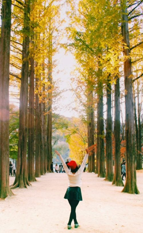 South Korea Autumn, Nami Island