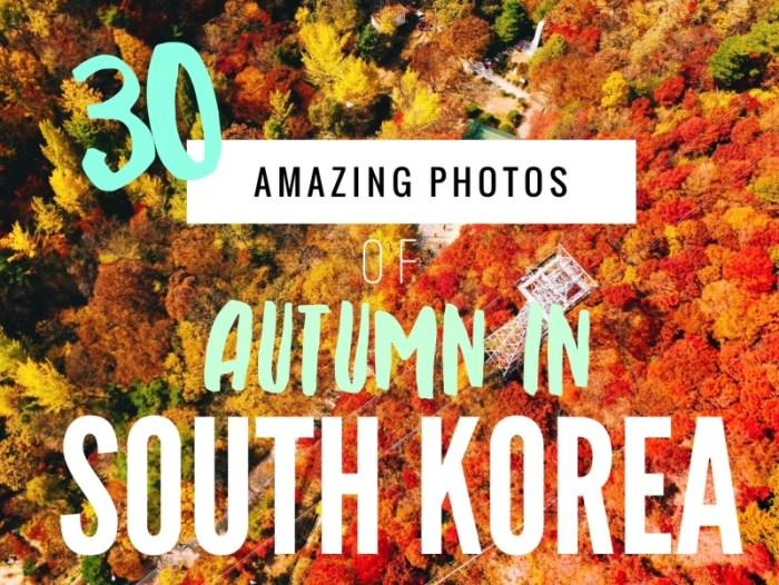 30 Amazing Photos of South Korea Autumn