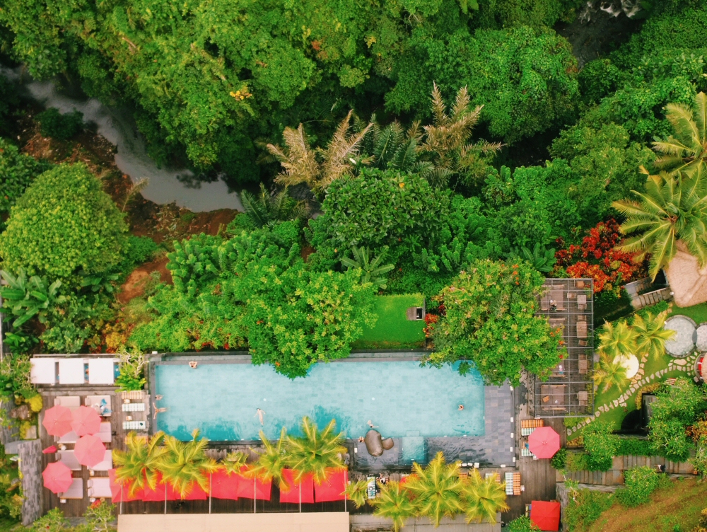 Jungle Fish Bali, Jungle Infinity Pool in Ubud, Indonesia