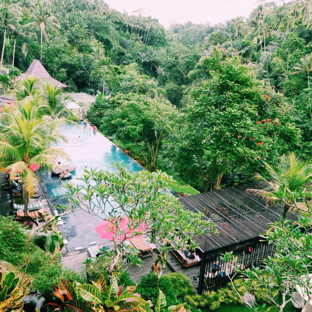 Jungle Fish Pool Club in Ubud, Bali