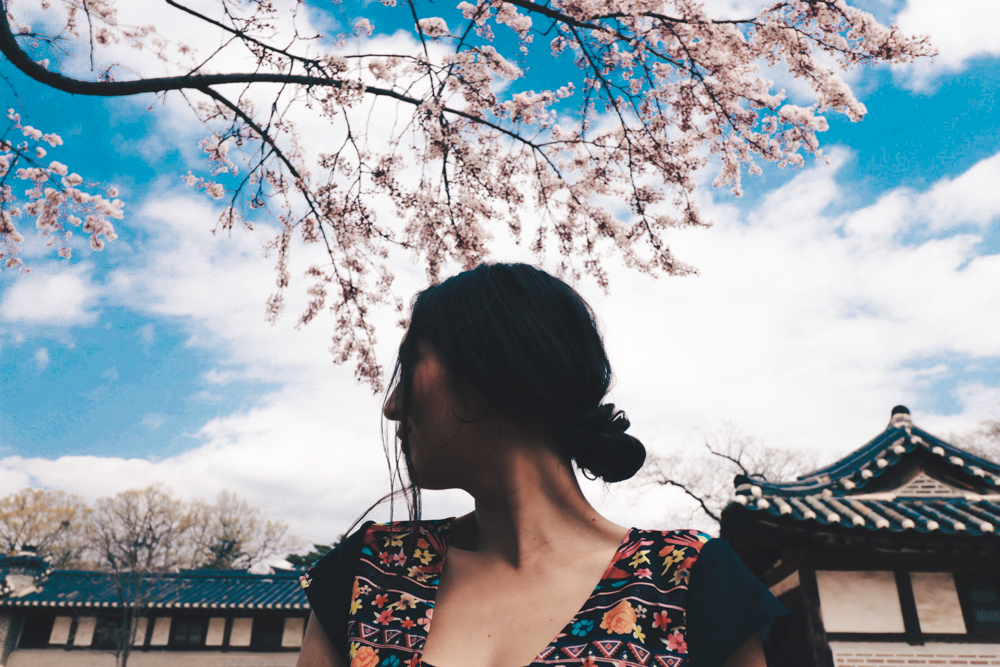 Lauren for Cherry Blossom Korea at Changdeokgung Palace