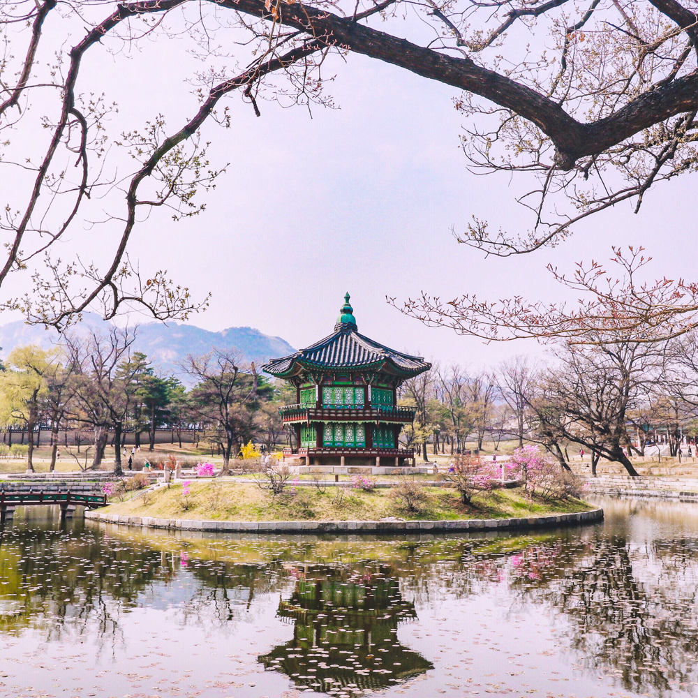 Seoul, Spring in Korea at Gyeongbokgung Palace