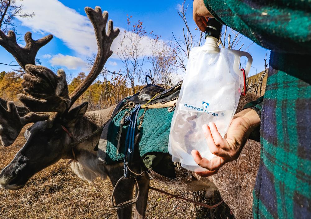 Survivor Filter Reindeer Trek in Mongolia