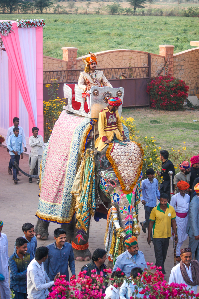 Royal Indian wedding groom arrival at the Thar Oasis Resort & Camp