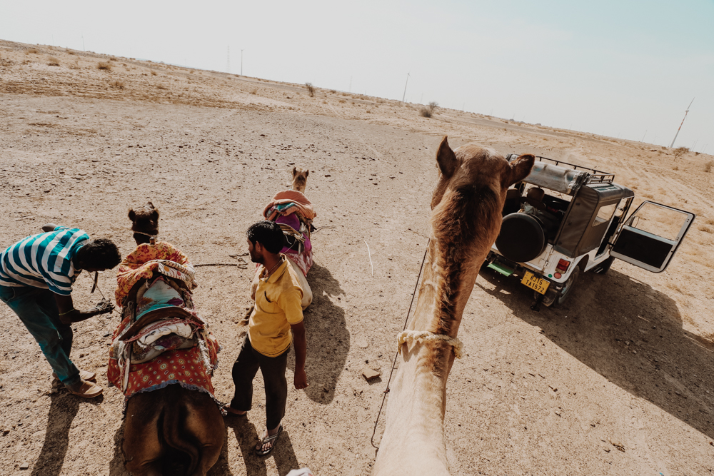 Riding camel in Rajasthan