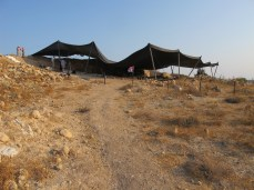 View of tents over Area E excavation, 2011