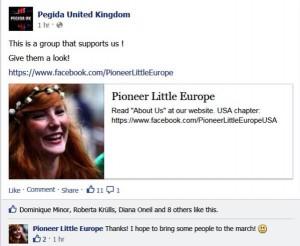 Pegida support