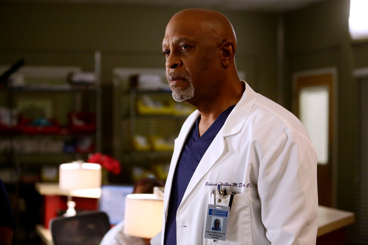 Grey's Anatomy Review: Jukebox Hero (Season 13 Episode 11)