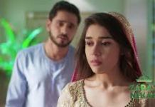 Zara's Nikah update Friday 18th September 2020 on zee world