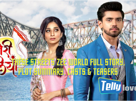 These Streets Zee World Full story, Plot Summary, Casts & Teasers