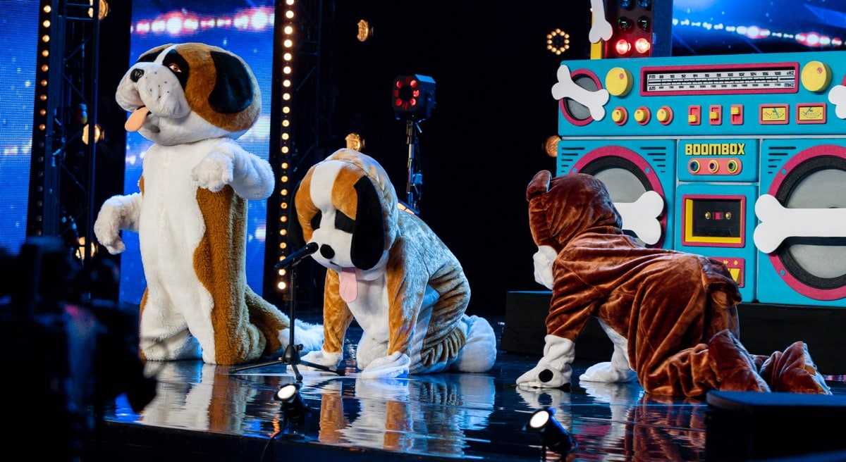 Disco Dogs.