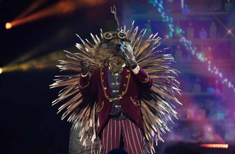 Hedgehog performs.