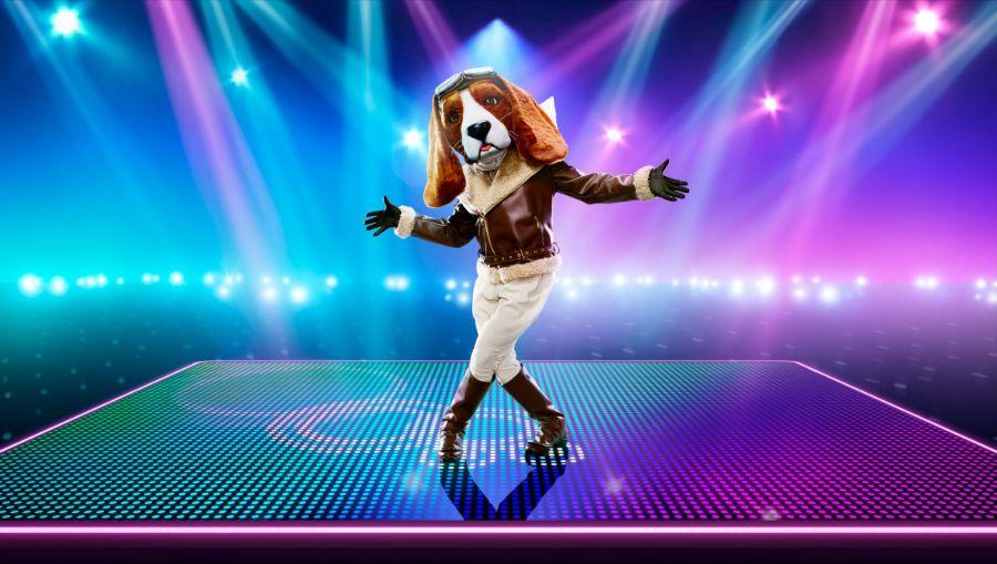 Beagle. Picture: ©ITV/Bandicoot TV
