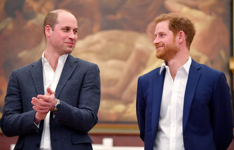 HARRY AND WILLIAM: WHAT WENT WRONG