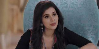 Jiji Maa: Obsessed Karma to kidnap Piyali