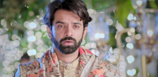Tanhaiyan Finale Episode 8 Haider abandons Meera