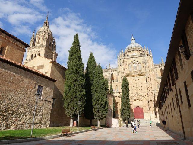 Qué ver y hacer en Salamanca: La Catedral