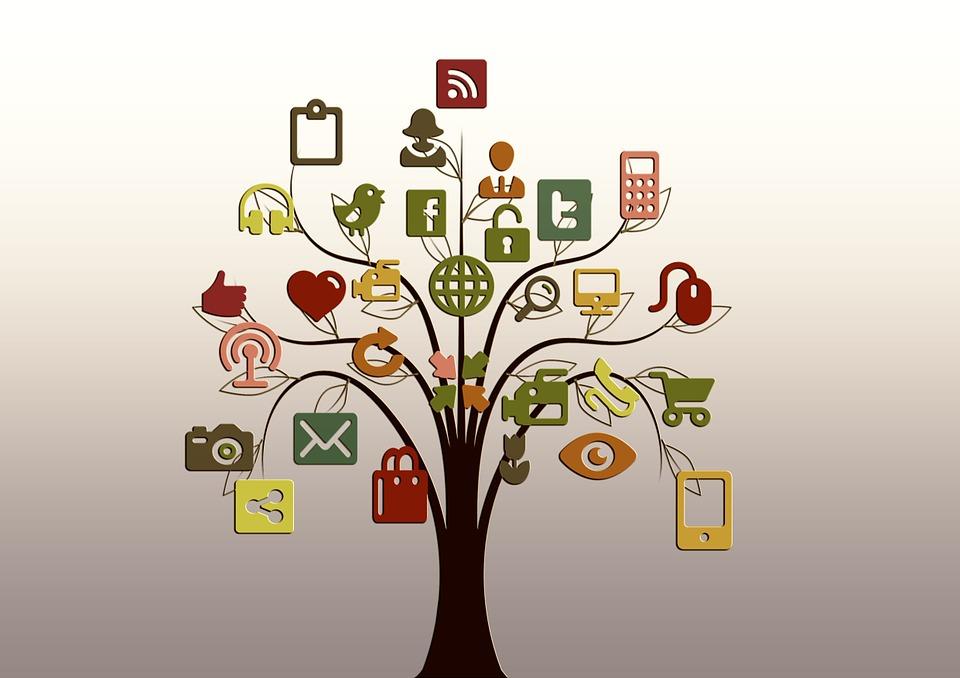 Árbol Estructura Redes Internet Red Social