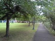 Errol Flynn Marina park