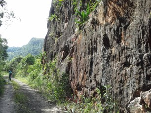Road blasted through a limestone hillock