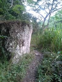 Monster rocks