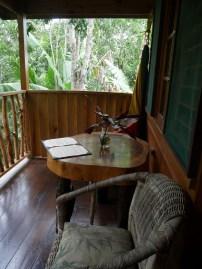 My verandah in the trees