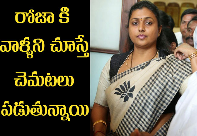 MLA roja fears with journalists