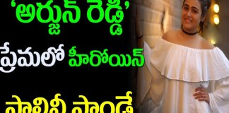 Shalini Pandey Love With Arjun Reddy Hero Vijay Devarakonda