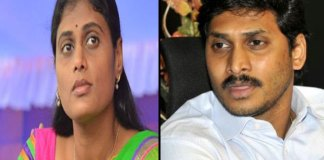 YS jagan offer To MP seat to ys sharmila