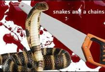 Snake and Chainsaw special Story